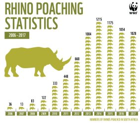 Rhino Poaching Stats till 2017